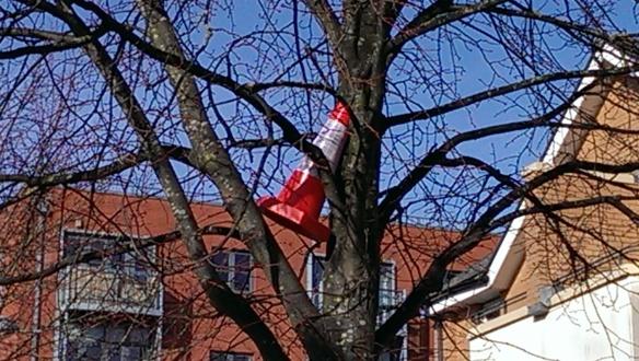 No tree climbing