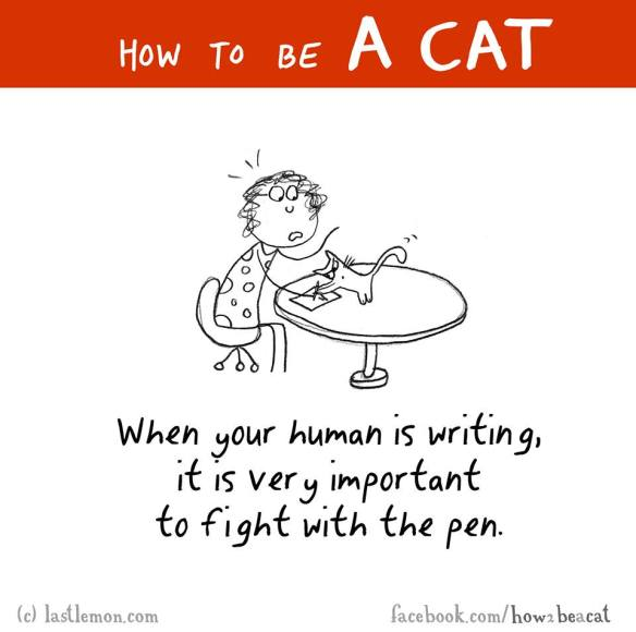 How to be a cat 4