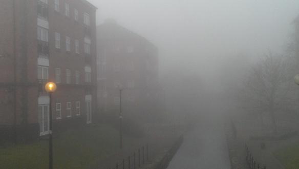 Foggy day [4]