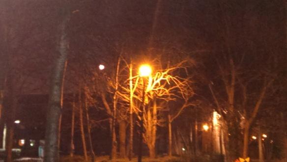 Moonlight [2]