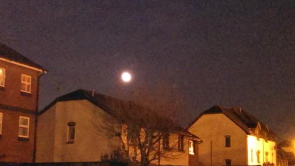 Moonlight [5]