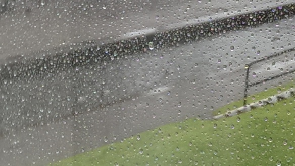 Rain[7]
