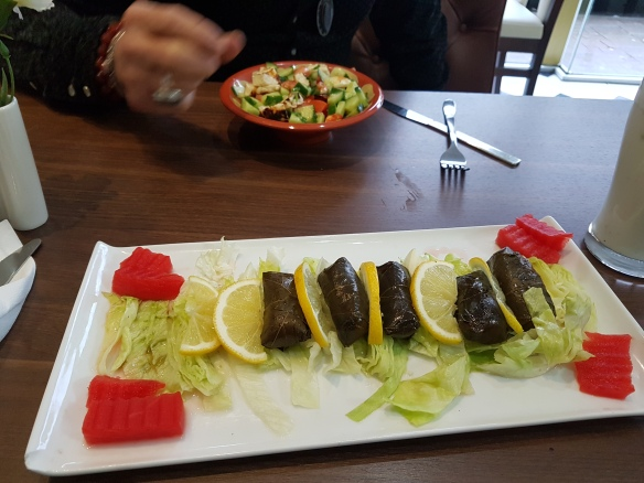 starter-of-vine-leaves-and-halloumi-salad-and-ayran-drinks