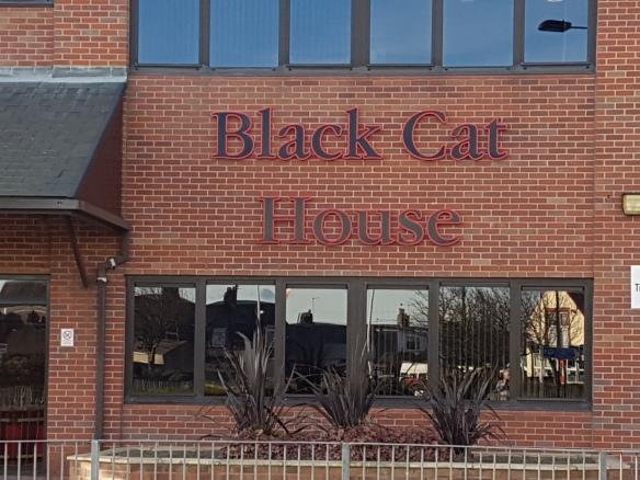 Black Cat House