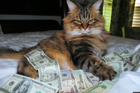 o-CASH-CAT-facebook