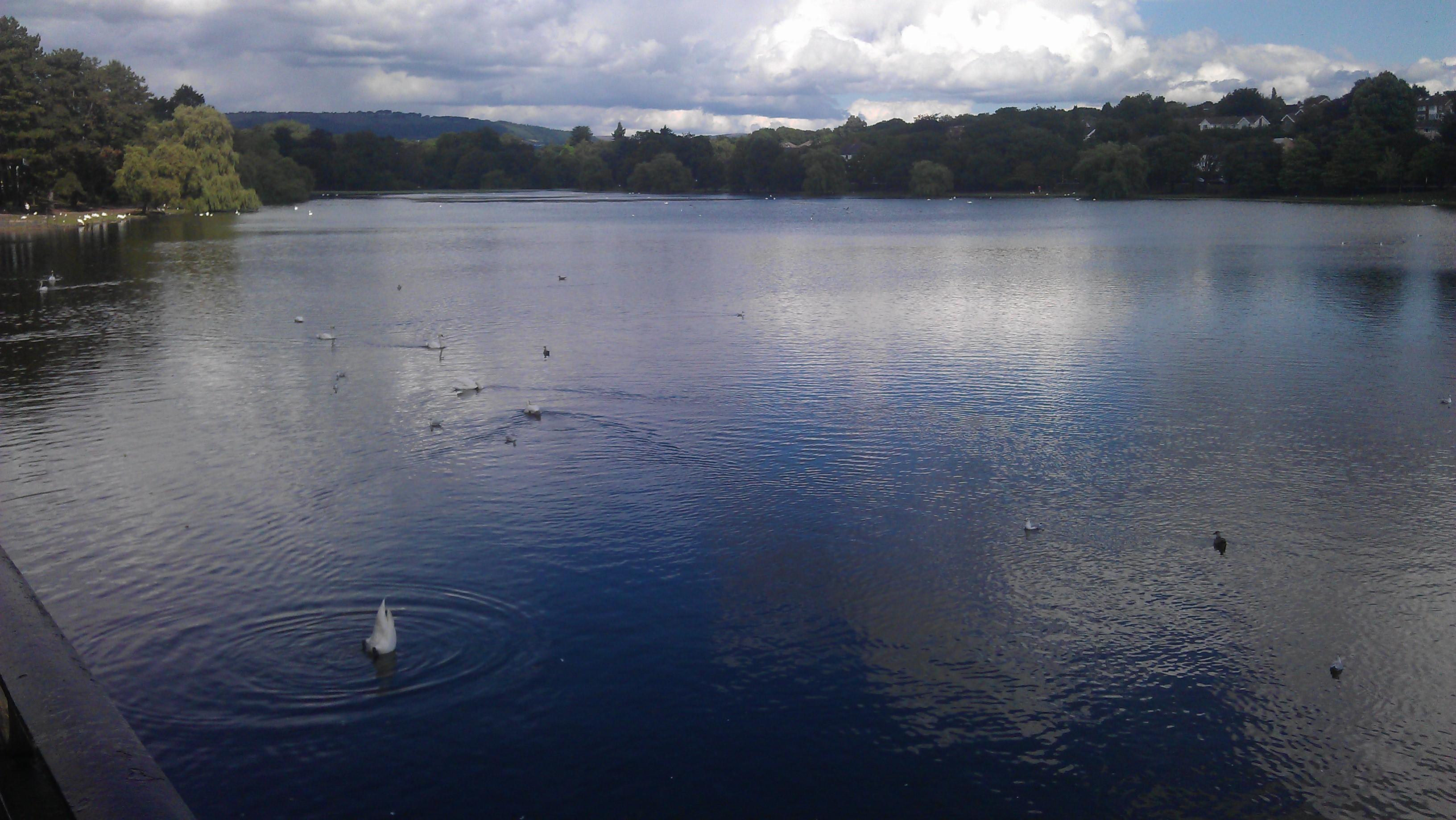 Roath park lake [3]