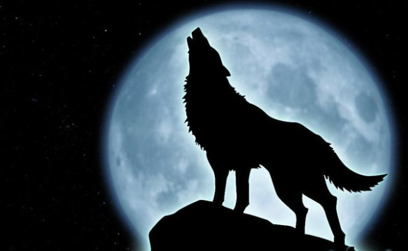 wolf_howling_at_the_moon_by_hmmmm1797