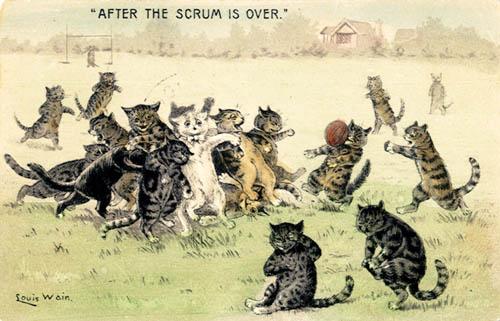 1907_cats